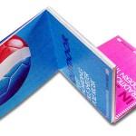 Pepsi Brandbook- fold